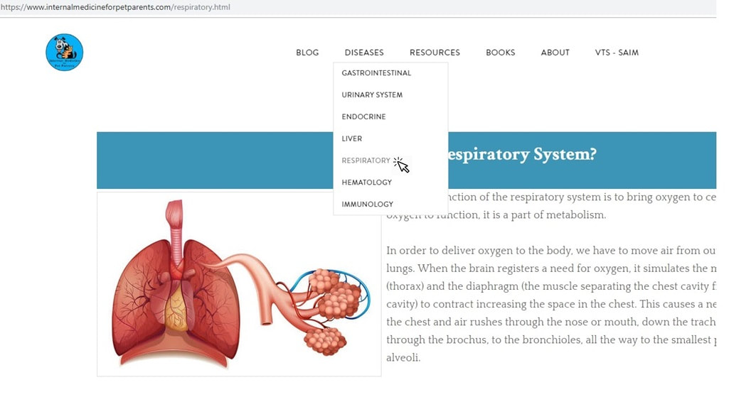 Respiratory Page on IMFPP Website